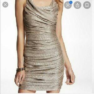 Metallic Express Dress